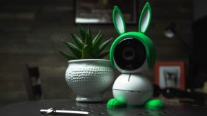 Arlo Baby Monitor with green bunny ears and feet on a table with a plant