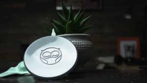 Owlet baby monitor on a table with a plant