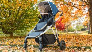 Mockingbird single stroller in some fall leaves
