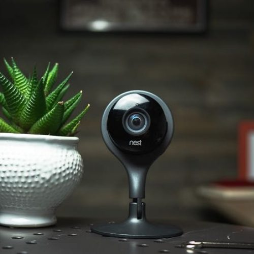 Nest Cam on a table with a plant